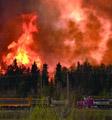 一把山火烧掉90亿加元