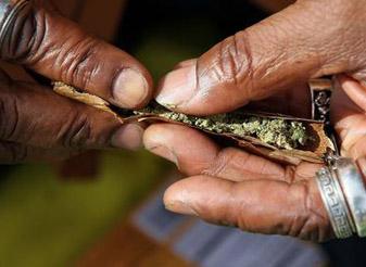 看看国外如何惩罚吸食大麻