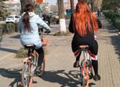 共享单车冲击波