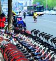 济南共享单车投放量沿海省会最低