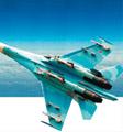 美侦察机遭俄拦截