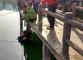 200多斤重男子落水 众人接力营救