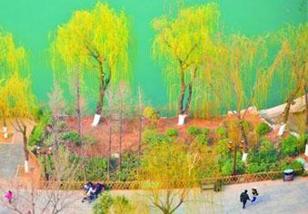 这次升温有望让济南正式入春