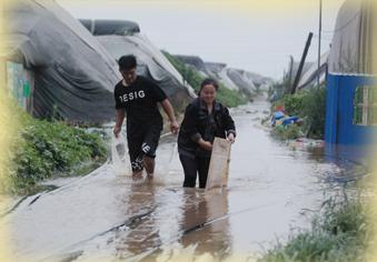 寿光菜农夫妻俩27小时连轴转排水