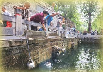 有泉水的城市真幸福