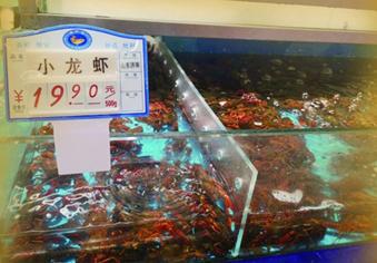 """""""腰斩""""的龙虾价"""