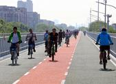 自行车专用路,你确定它会被专用?