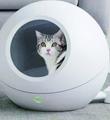 智能宠物窝真的安全吗?
