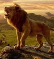 《狮子王》:归来谈情怀 情怀值几分