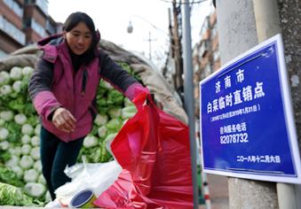 """济南""""白菜地图""""55天排解卖菜难"""