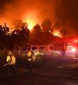 高温致死、山火肆虐……北半球成蒸笼
