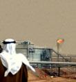 """沙特下定决心戒掉""""油瘾"""""""