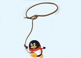 """你被这只""""企鹅""""绑定了么"""