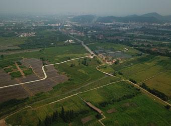 太湖之畔穿越五千多年的稻浪飘香