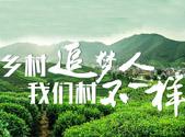 """""""打造乡村振兴齐鲁样板""""系列短视频征集活动开启"""