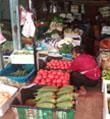 供给宽松省城部分蔬菜降价明显