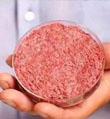 """走红的""""人造肉""""不过是""""回锅肉""""?"""