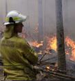 又有消防员殉职,澳政府终于坐不住了