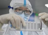 部分疫苗有望4月临床试验