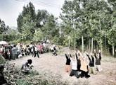 一场复兴乡村的戏剧试验