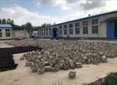 临沭:小柳条编出25亿大产业