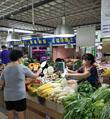 省城菠菜迫近每斤十元