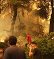希腊山火肆虐