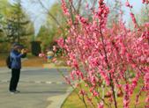 春雨后山东最高温仍保持在20℃左右